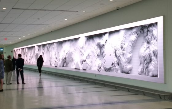 CASE STUDY: Charlotte International Airport